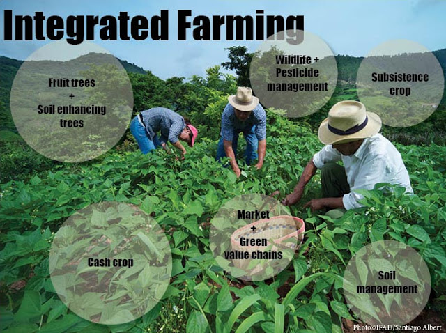 Integrated farming-en