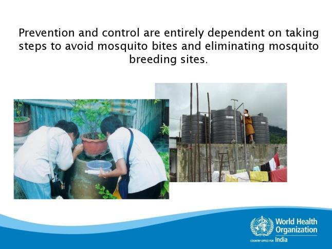 dengue-page-027