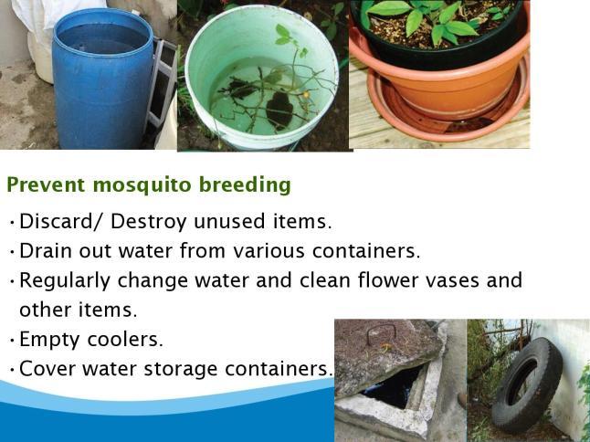 dengue-page-028